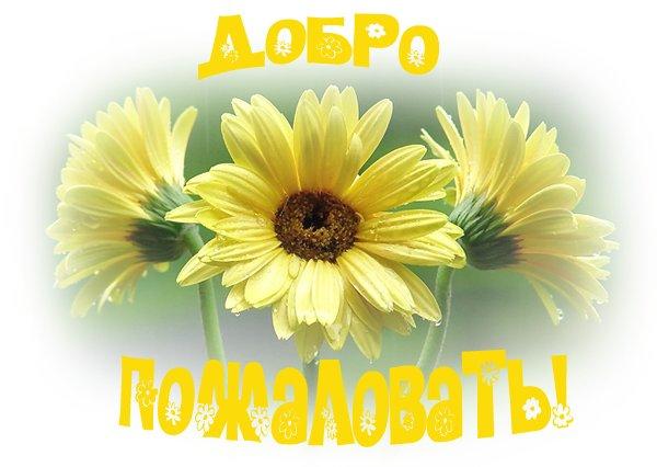 http://fanclub.ucoz.ua/_nw/0/83485239.jpg